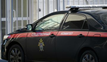 В СК рассказали об убийстве матерью двух детей в Москве