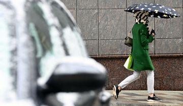 В Москве приняли меры из-за мокрого снега