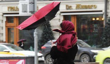 В Москве и области продлили желтый уровень погодной опасности