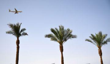 Туроператоры рассказали, когда ждать массового турпотока из РФ в Египет